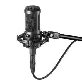 Professzionális mikrofon